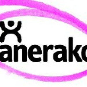 logo lanerako