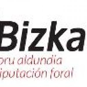 logo diputacion bizkaia